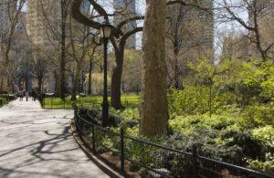 The landscape of Battery Park City