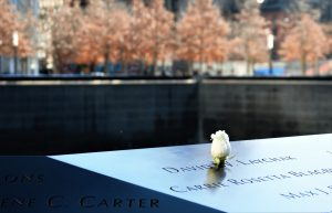 A white flower on top of a memorial stone
